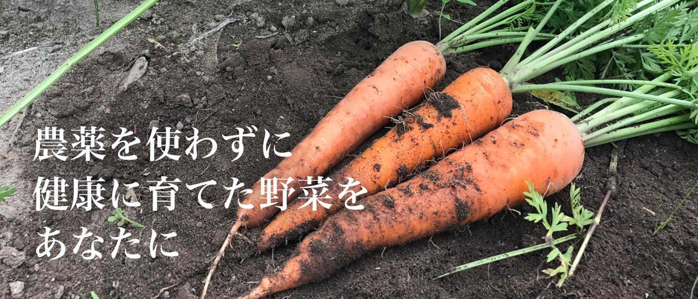 農園MITU