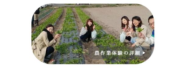 自然農園MITU